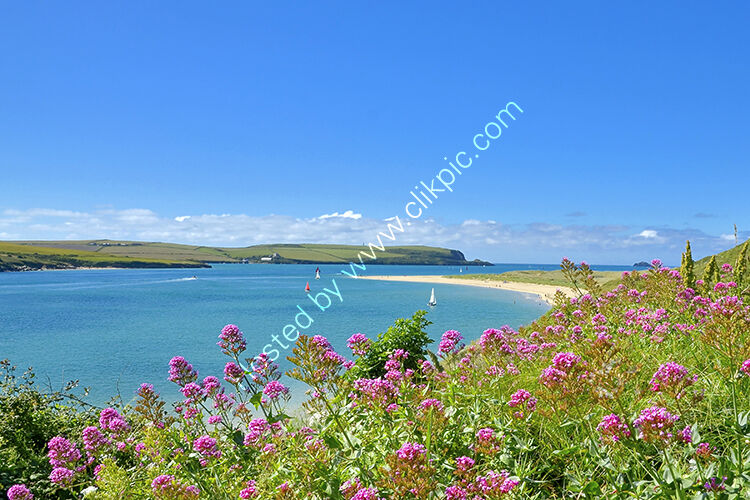 The view from Rock over Daymer Bay.