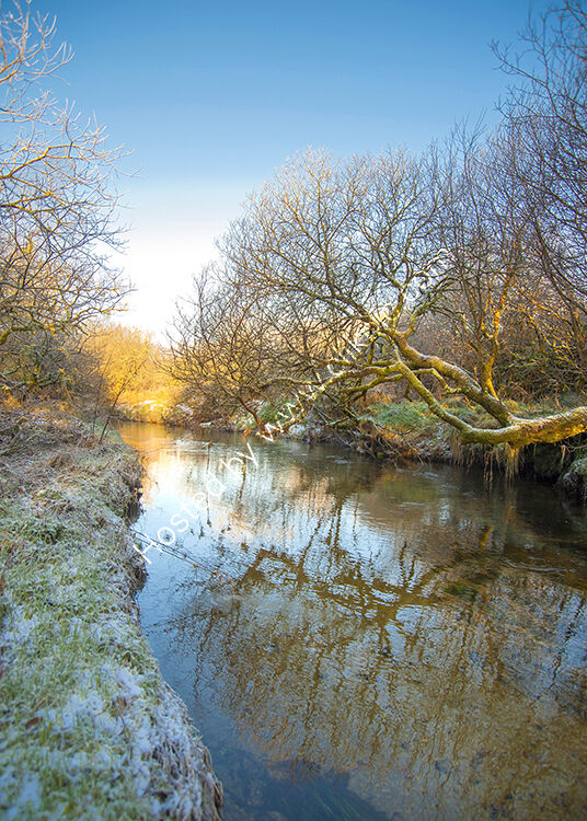 The River Fowey in the Draynes valley, on Bodmin Moor.