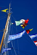 Mast of tall ship from Liverpoll 2008Featuring Liverpool 08 logo