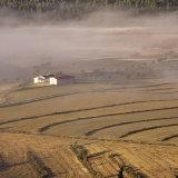 Almeria Farm
