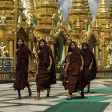Yangon Monks