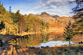 Blea Tarn in Autumn 3