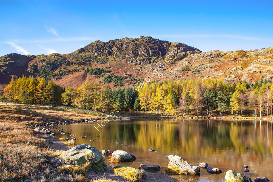 Blea Tarn in Autumn 4