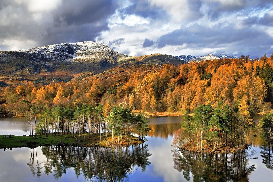 Tarn Hows in Autumn 7