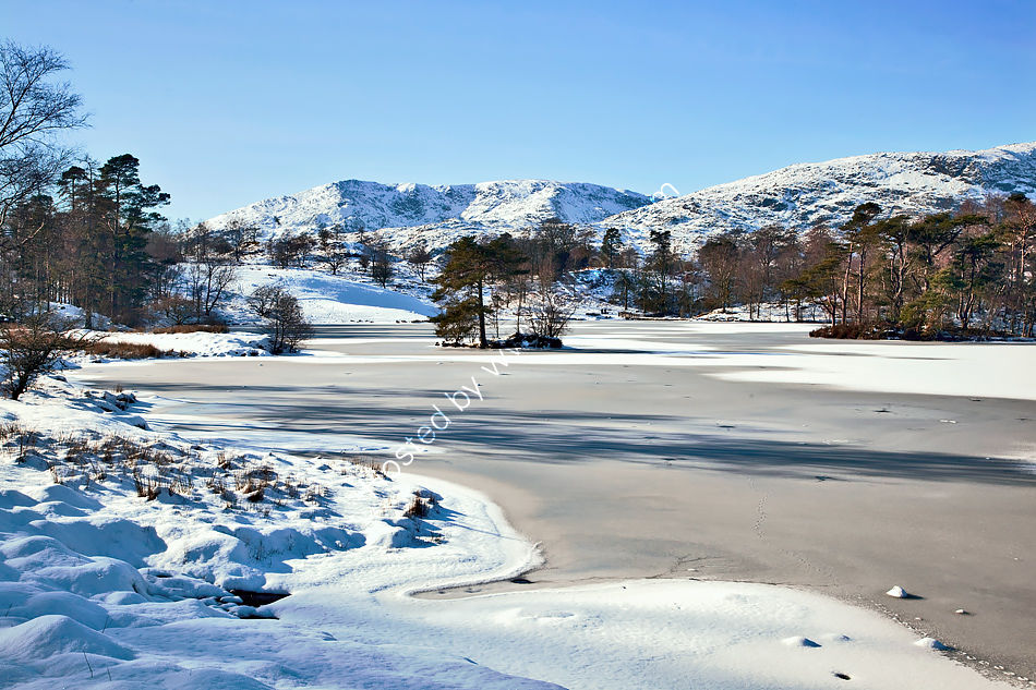 Tarn Hows in Winter 2