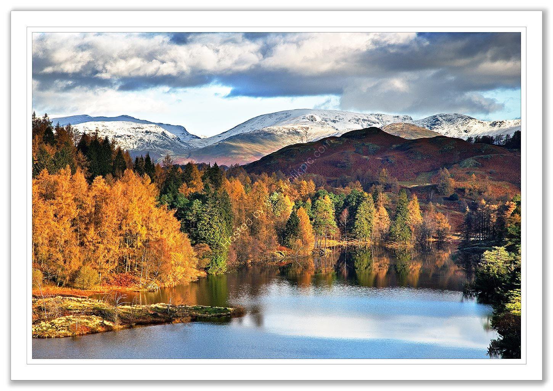 Tarn Hows in Autumn 6
