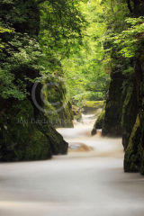 The Fairy Glen .....
