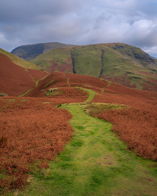 'Paths towards Robinson'