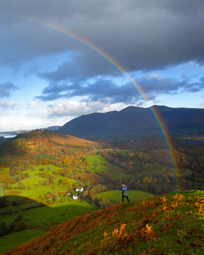 'Magnificent Light on Catbells'