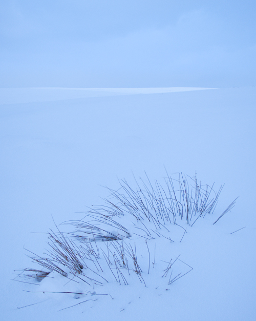 'Dawn Light on the North Yorkshire Moors in Winter'