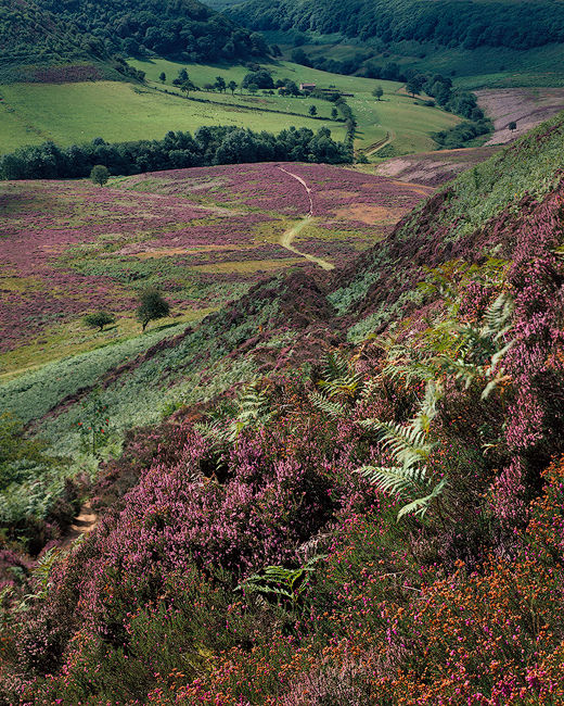 'The Hole of Horcum'