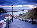 'Whitby Steps and Harbour'