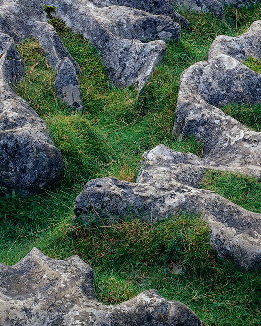 'Patterns at Malham'