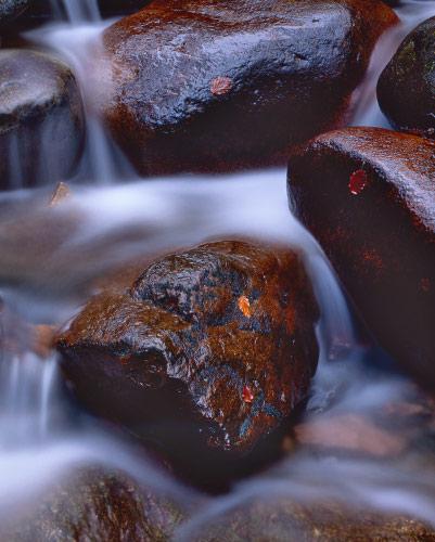 'Red Rock Stream'