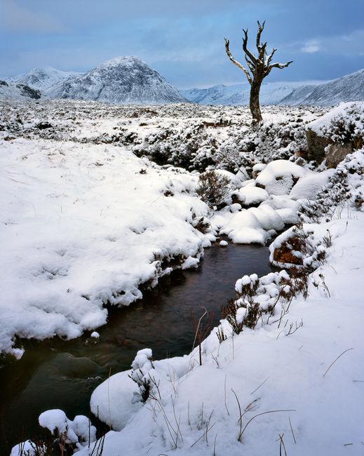 'Rannoch Moor'
