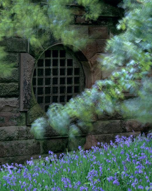 'Through the round window'