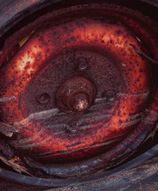 'Mulgrave Detail #10'