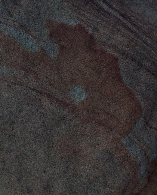 'Abstract #11 Mulgrave Bear'