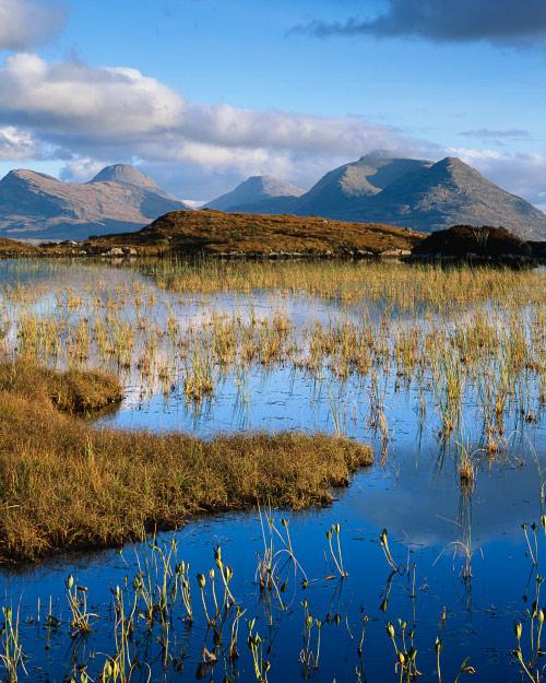 'Blue Lochan'