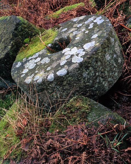 'Millstone Graveyard'