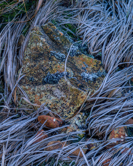 Frosted Rocks