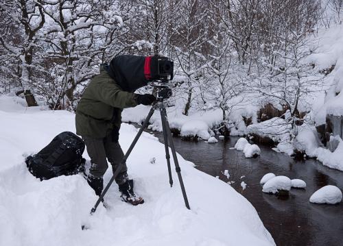 'JB in a winter wonderland at Fen Bog' - thanks to David Tolcher