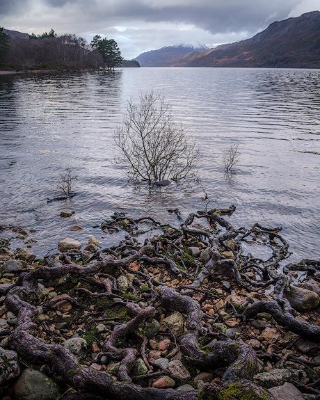 'Loch Maree'