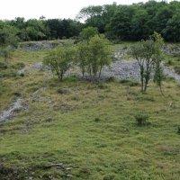 Cheddar hills