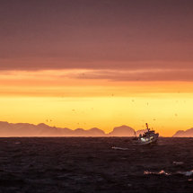 Fishing Boat at Dawn