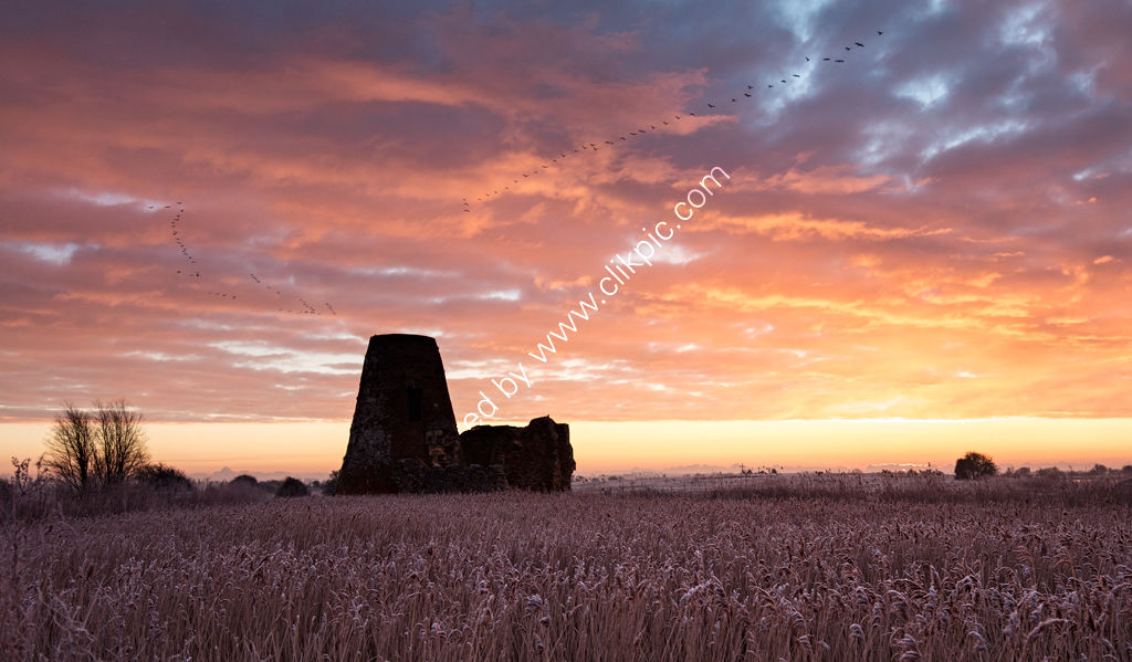 Geese over St Benet's Abbey at Sunrise