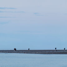 Hunstanton Beach Walkers