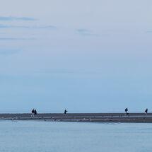 Hunstanton Beach Walkers