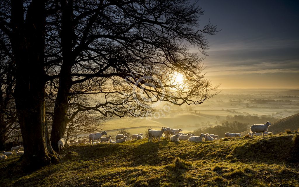Martinsell Hill, Wiltshire