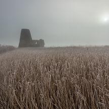 St Benet's Abbey Mist