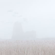 Birds Flying over a Misty St Benet's Abbey