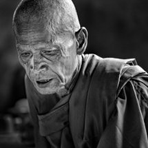 Thoughtful Monk