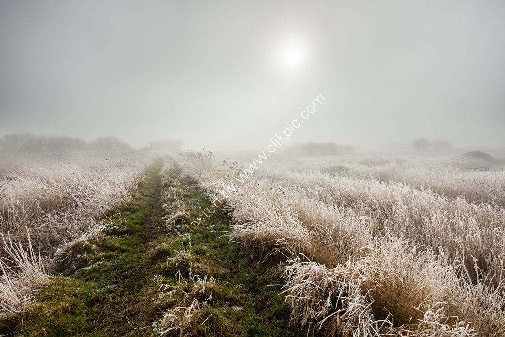 Mist and Frost on the Norfolk Broads