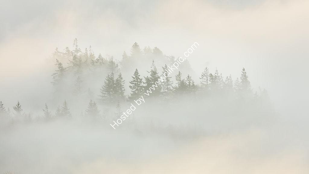 Ullswater Mist