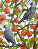 Jackdaws and Apple Tree
