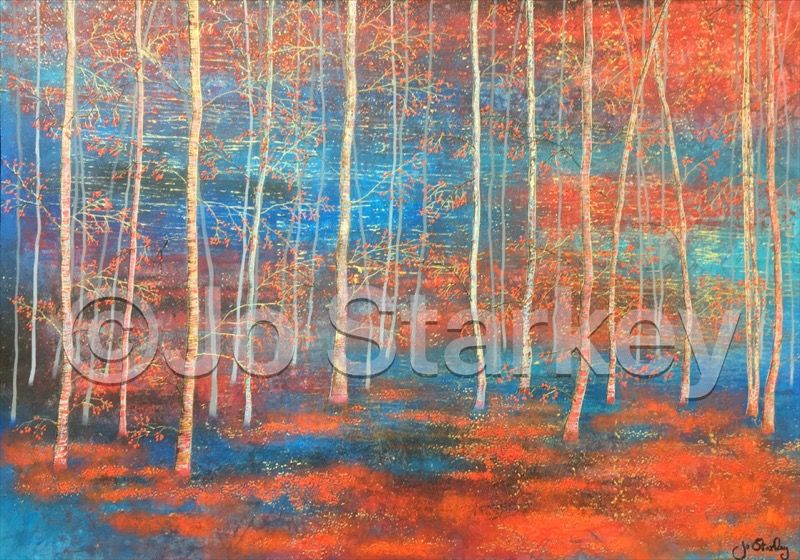 Silver Birch Woodland Painting by Jo Starkey
