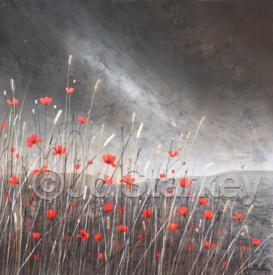 'Dramatic poppy landscape by Jo Starkey'