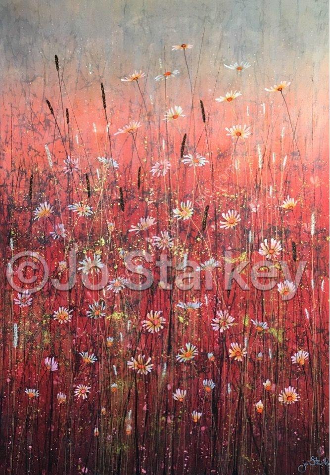 'Contemporary Wild Daisy Meadow Painting by Jo Starkey'