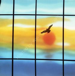 """Seagull at Sunset"" - 1960"
