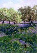 Landscape with Bluebells, Dorset.