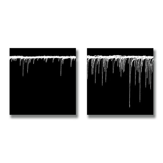 Control and With Alpha Dendrotoxin, Archival Pigment Print on canvas, each 26 x 26cm