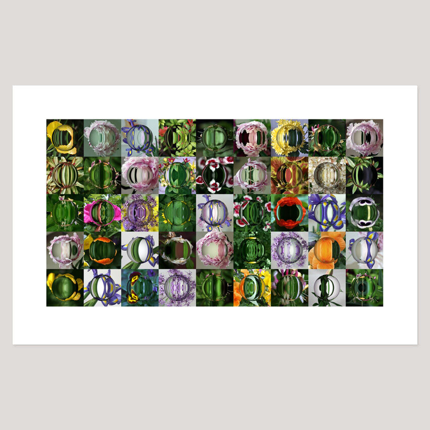 Garden (10), Archival Digital Print 108 x 69cm