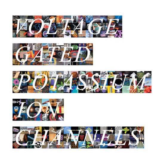 Voltage Gated Potassium Ion Channels, Archival Pigment Prints each 18cm high