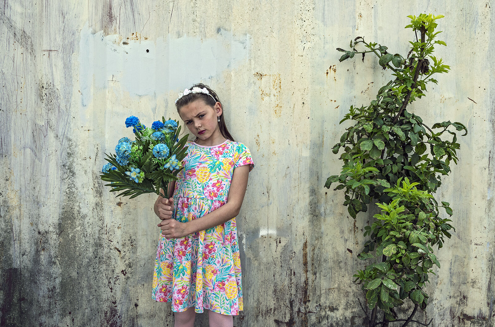 Alesha, Blue Flowers, Dublin, Ireland 2020