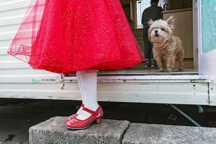 Alesha's Red Dress and Shoes, roadside campsite, Tipperary, Ireland New Year Day 2019