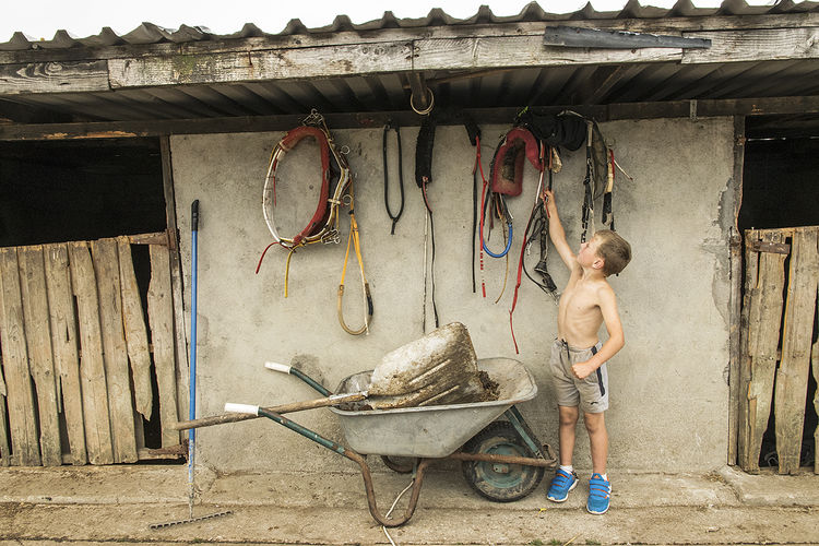 Boy hanging horse harness, roadside campsite, Tipperary, Ireland 2018